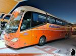 Irizar i6 3.90 / Scania K410 / Pullman Bus
