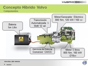 Hibrido 2 (2)